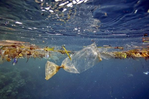 Heart for the Ocean : บอกรักทะเล บอกเลิกพลาสติก
