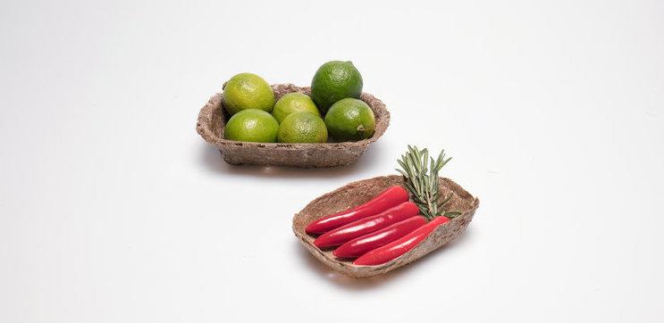 'POC' บรรจุภัณฑ์ใส่อาหาร ผลิตจากหญ้าทะเล ลดปัญหาขยะพลาสติก