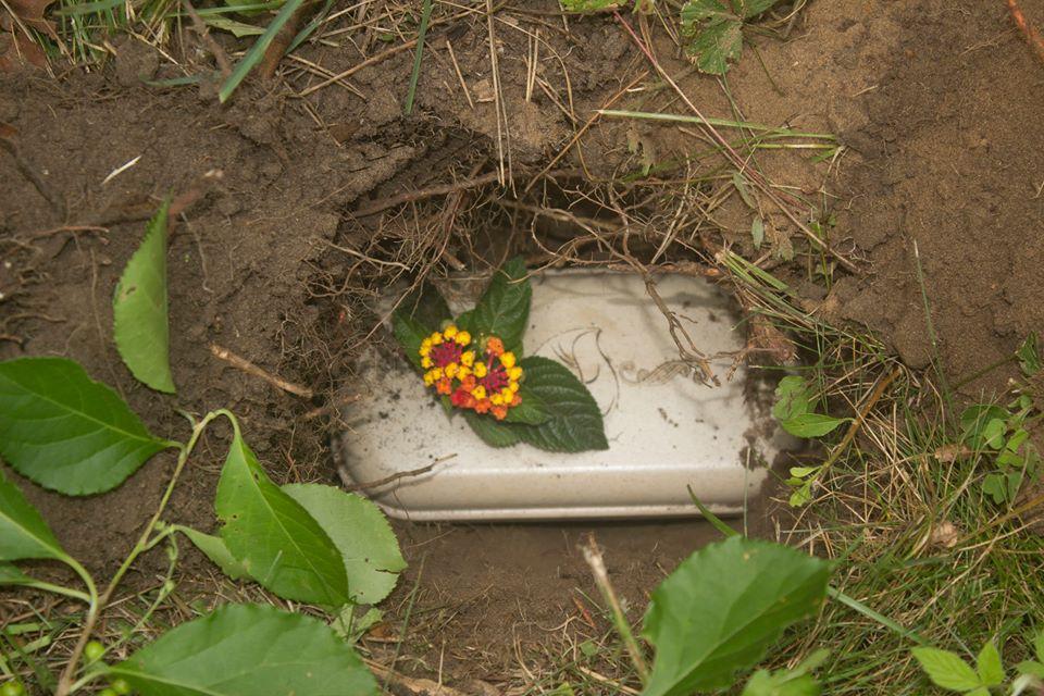 Paw Pods บรรจุภัณฑ์รักษ์โลกให้คุณจัดพิธีศพแด่สัตว์เลี้ยงแสนรักได้อย่างสวยงามมากยิ่งขึ้น