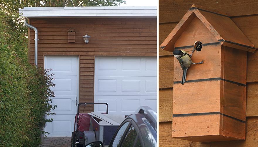 โปรเจ็กต์ Happy City Birds: นกแฮปปี้มีบ้านน่ารักๆ ในเมืองจากขยะอัพไซเคิล