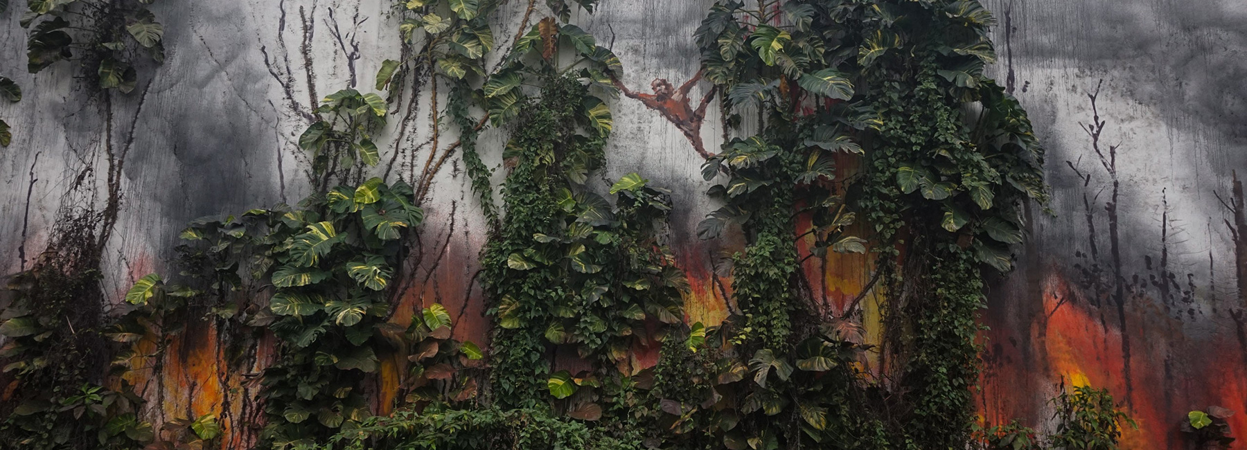 Splash and Burn วอนหยุดทำลายป่าในอินโดฯ เพื่ออตุสาหกรรมน้ำมันปาล์มเสียที!!
