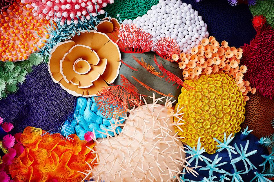 Coralium: ศิลปะตัดกระดาษสร้างสรรค์ปะการัง..สร้างสมดุลให้ธรรมชาติ