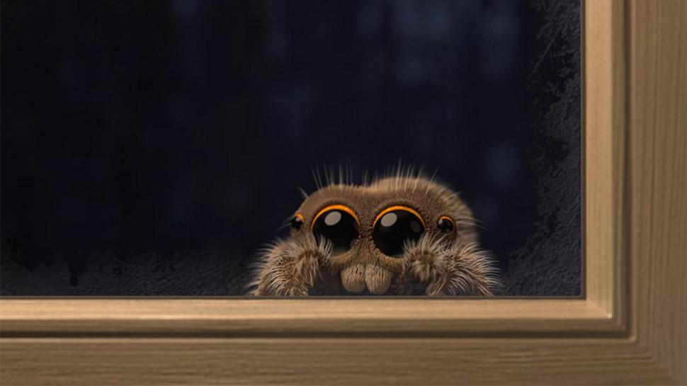 Lucas The Spider: แมงมุมน้อยลูคัส อะนิเมชั่นสุดน่ารักที่จะทำให้คุณหายกลัวแมงมุม