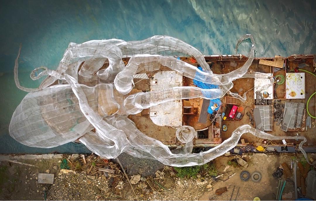 ปลาหมึกยักษ์และเรือรบสมัยสงครามโลกสู่ปะการังเทียมกลางทะเลแคริเบียน