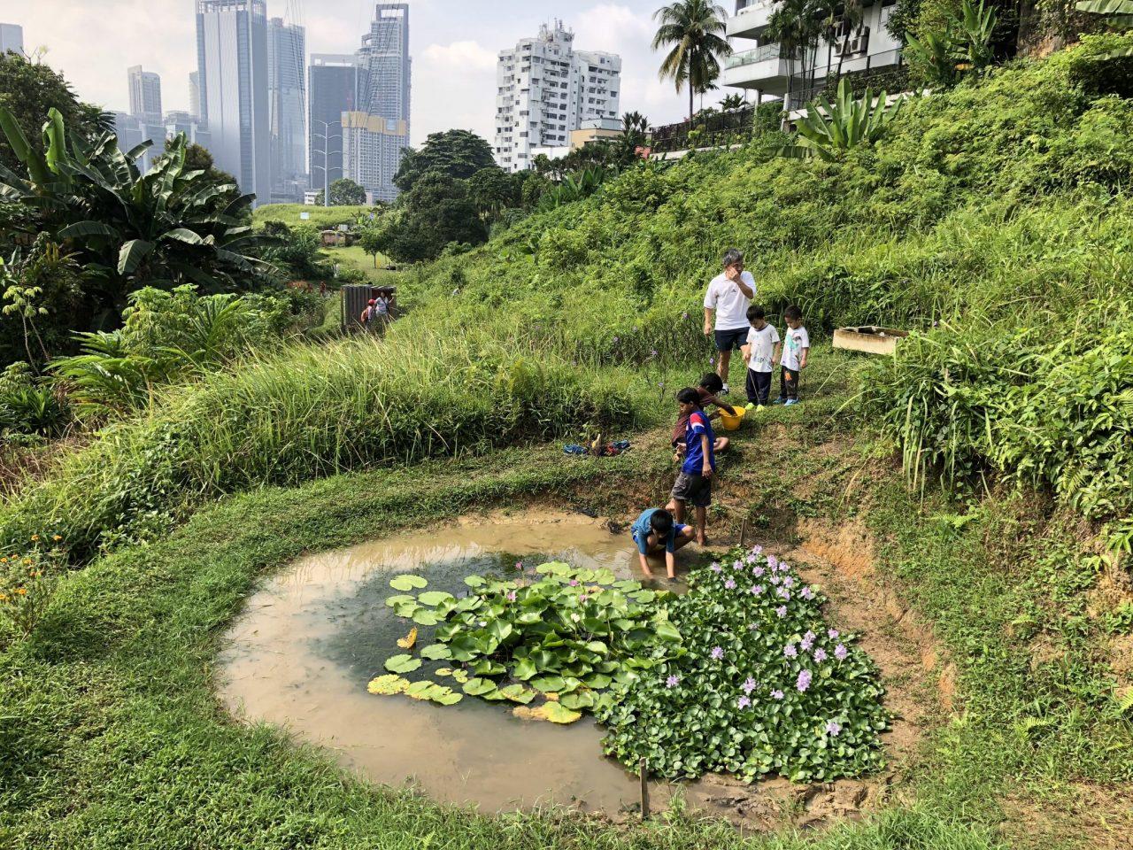 Kebun-Kebun Bangsar พื้นที่ไร้ประโยชน์สู่สวนสีเขียวมากคุณค่าสำหรับชุมชนในมาเลเซีย