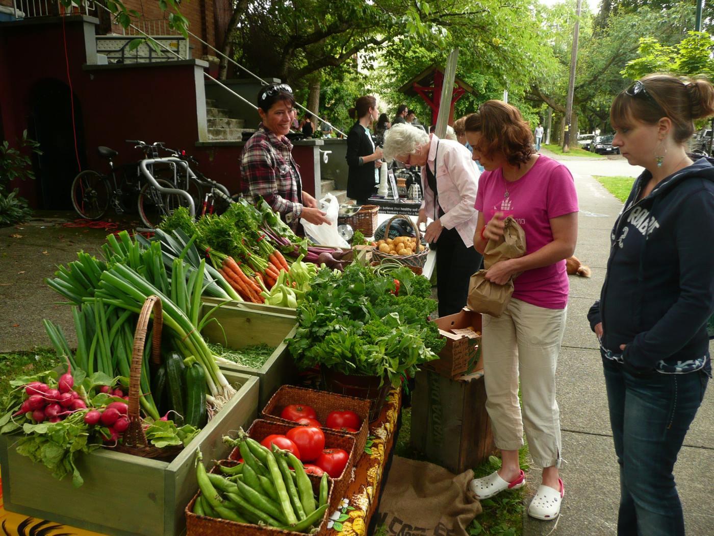 Food is Free: แจกฟรีพืชผัก แบ่งปันอาหารอินทรีย์ สร้างสัมพันธ์ที่ดีในชุมชน