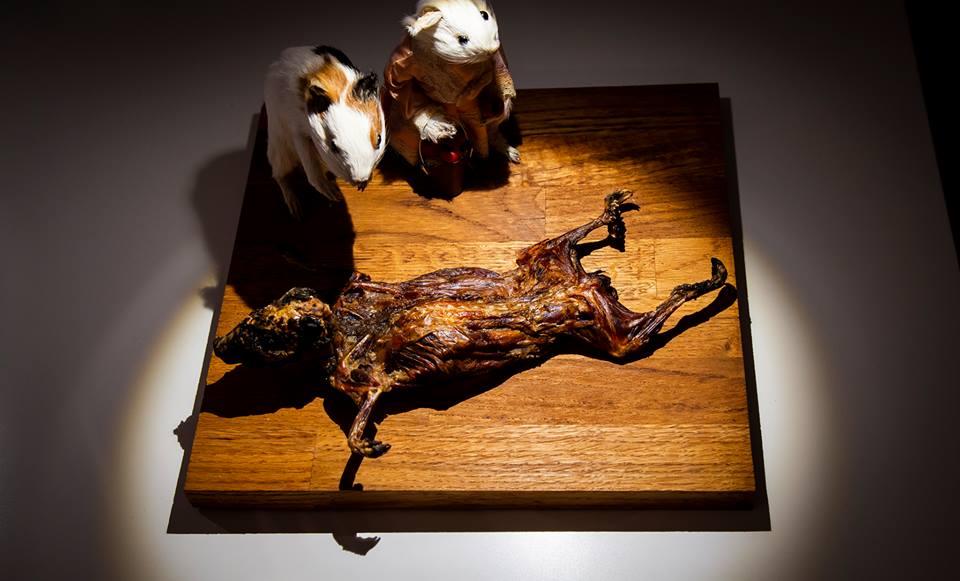 พิพิธภัณฑ์อาหารชวนอ้วก: วัฒนธรรมที่แตกต่างของ 'ความอร่อย' และ 'น่าขยะแขยง'