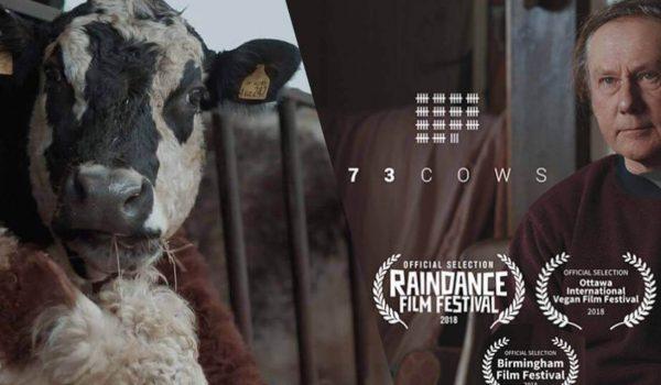 73 Cows: ปลดปล่อยชีวิตเพื่อชีวิตที่ดีกว่า
