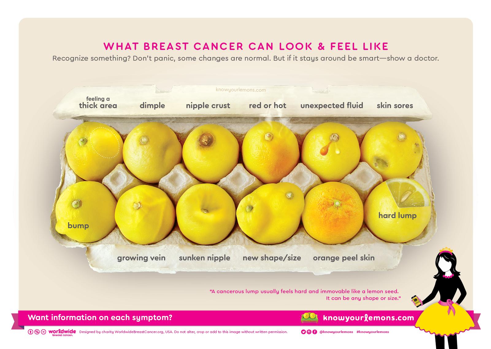 Know Your Lemons  รู้จักมะนาวรู้จักเต้านม แอพฯ ช่วยผู้หญิงตรวจเช็คมะเร็งเต้านมด้วยตัวเองง่ายๆ