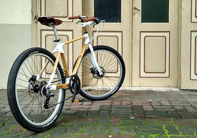 Spedagi จักรยานไม้ไผ่แห่งเกาะชวา สร้างงานให้ชุมชน หนุนการท่องเที่ยวท้องถิ่น