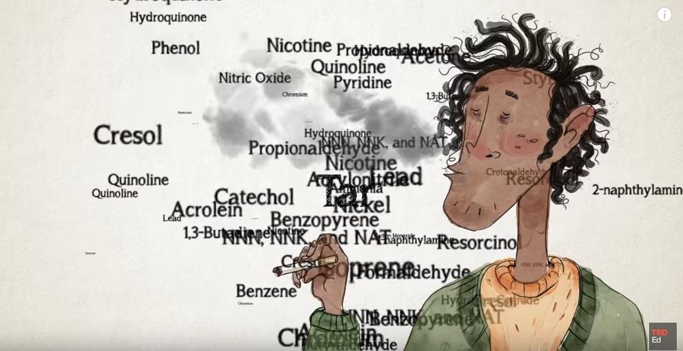ผลกระทบจากบุหรี่แบบเห็นภาพแจ่มชัด ทะลุตับไต เข้าใจง่าย ฉบับการ์ตูน