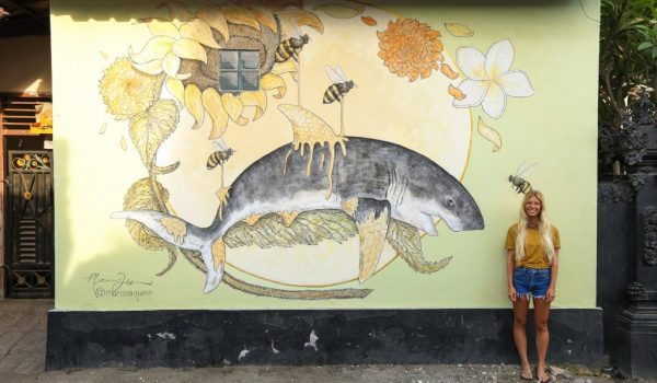 กำแพงศิลป์รอบเกาะบาหลี สร้างสำนึกรักบ้านเกิด ปกป้องธรรมชาติให้สวยงาม