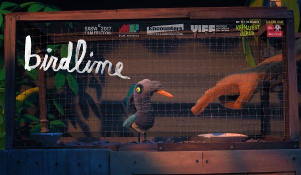 Birdlime: หยุดล่า...หยุดจองจำ เพราะทุกชีวิตล้วนรักบ้านกันทั้งนั้น