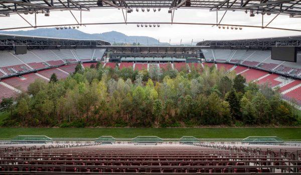 For Forest ประติมากรรมมีชีวิต อนาคตเราอาจต้องซื้อตั๋วเพื่อชมผืนป่าแบบติดขอบสนาม
