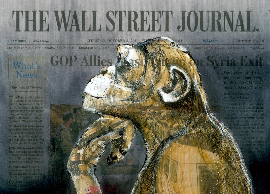 ศิลปิน Lisa Törner สะท้อนภาพคู่ขนานของชีวิตสัตว์ป่าและมนุษย์บนหน้าหนังสือพิมพ์ดัง
