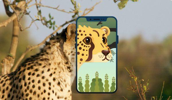 Wildchain เกมออนไลน์ที่ชวนเกมเมอร์เก็บแต้มอนุรักษ์สัตว์ป่า